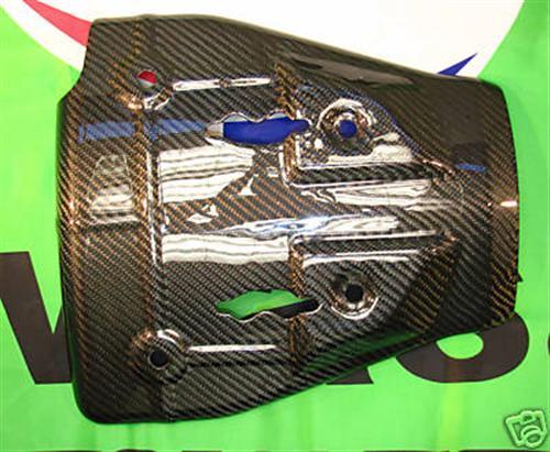 Passend für Kawasaki ZX6-R 2005 2006 Echt Carbon Heck