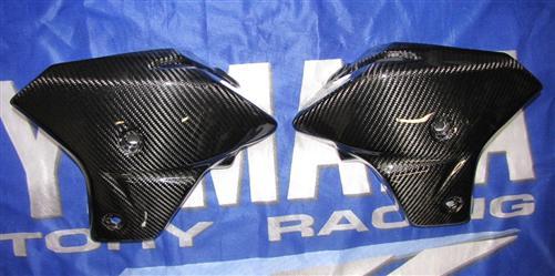 Passend für Yamaha Fazer FZ8 2011 RN25 ECHT Carbon Seitenverkleidung Kühler