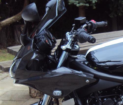 Für Yamaha Fazer FZS 1000 01-05  Carbon  Verkleidung Kanzel